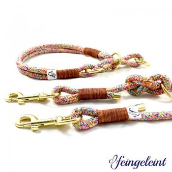 Halsband und Leinen Set aus Tau | 'Springbreak', 41-48cm Halsumfang